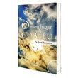 Livro O meu Lugar é o Céu